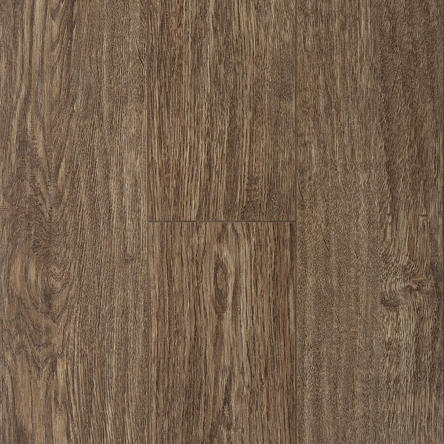 Alpine Oak   8009